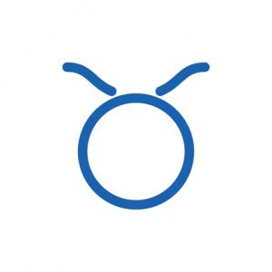Jahreshoroskop 2019 Stier